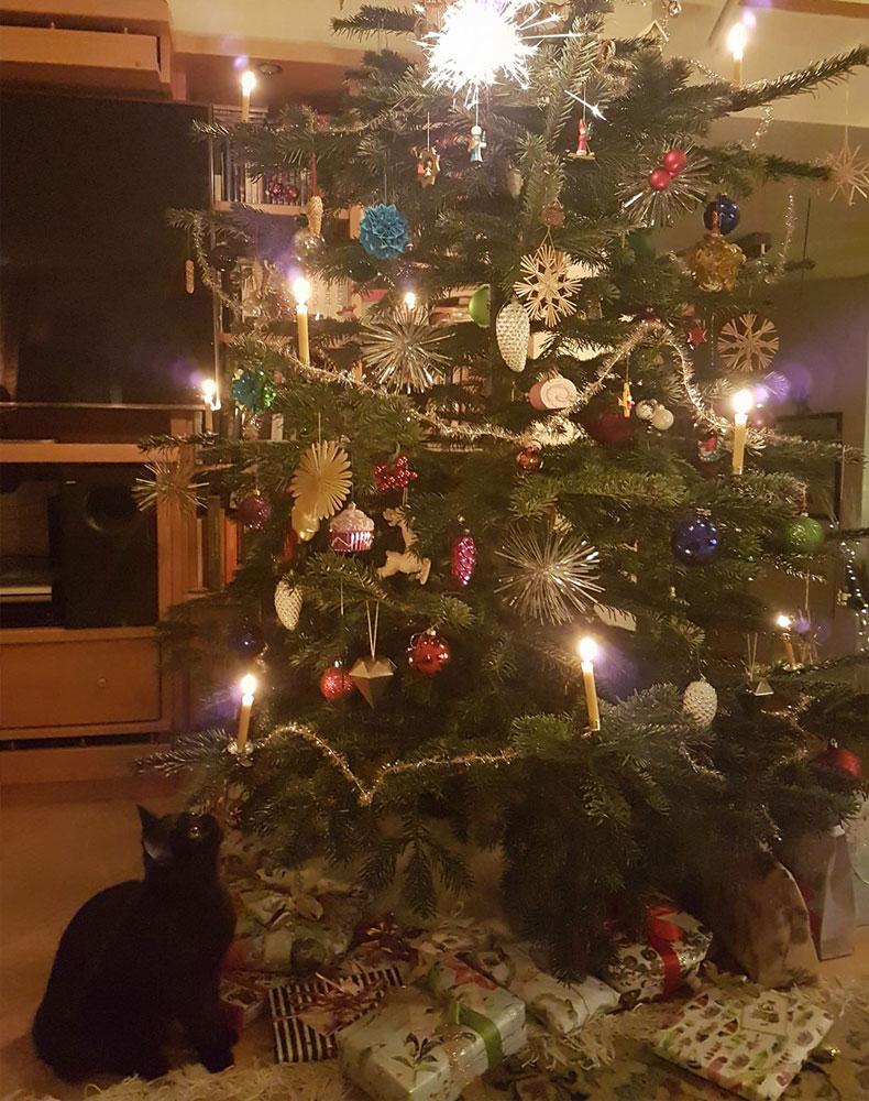 Frohe Weihnachten! - Korat